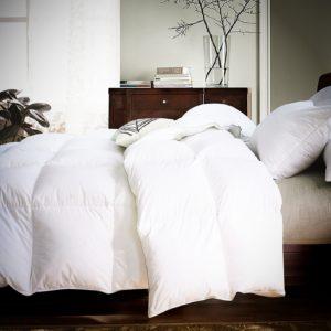 Down comforter Box stitched & Alternative